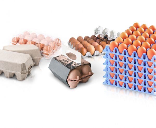 packaging solutions for eggs industry
